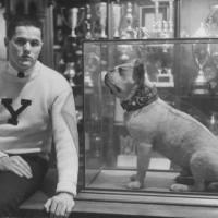Modern Mystery Men: Voyage to Voynich {Vintage Style Inspiration 2013}