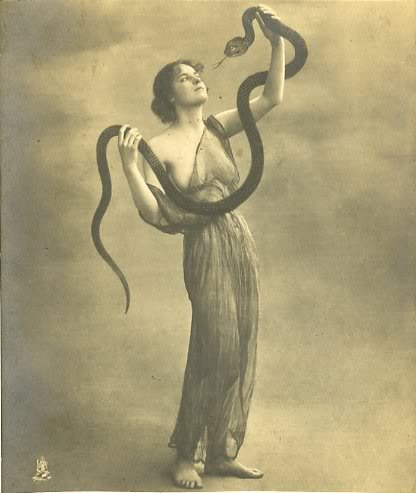 snakegown