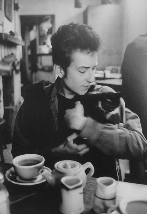 Cat and Bob Dylan and tea
