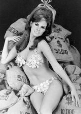 dreams Money bags raquel welsh