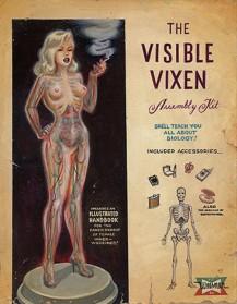 Women of the Eye Invisible Vixen