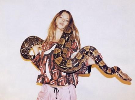kate- snake mossbeauty8-500x368