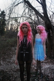 Twins pink hair