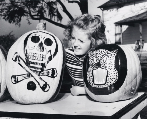 EOF- You are Supposed to Carve the Pumpkin Not Paint it Brenda