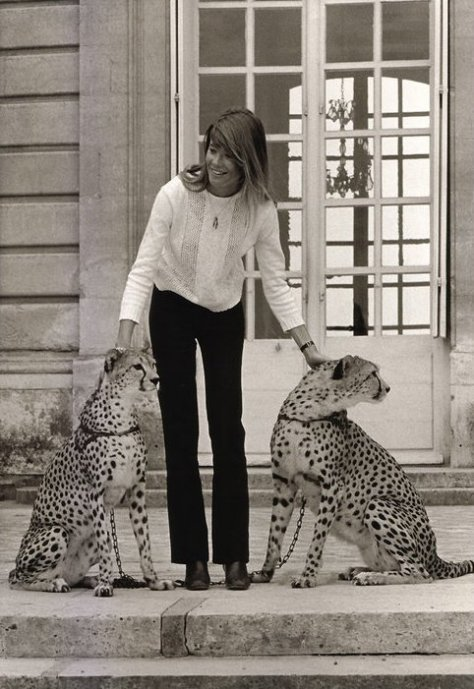 eof style idol- francoise hardy and leopards