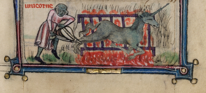 EOF- How to cook a Unicorn