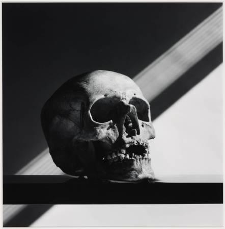 Skull 1988, printed 1990 by Robert Mapplethorpe 1946-1989
