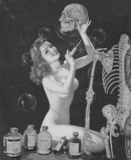 Science of Sex - Skeleton and Pinup Girl