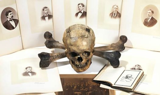 skull-and-bones-ballot-box