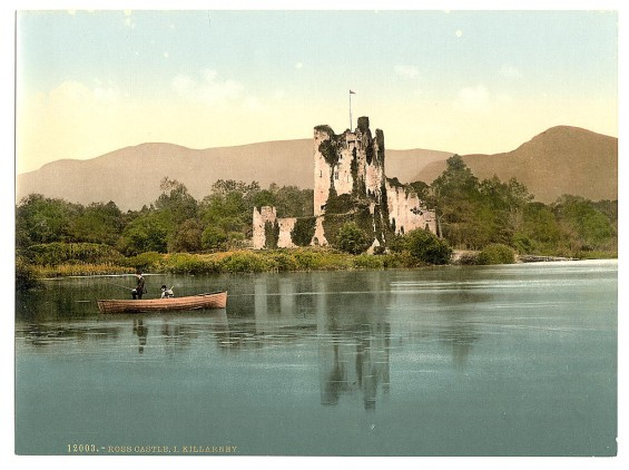 Vintage Ireland 1890-1900