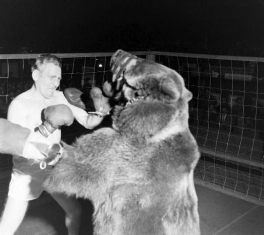 Men Who Fight Bears- The Eye of Faith 2