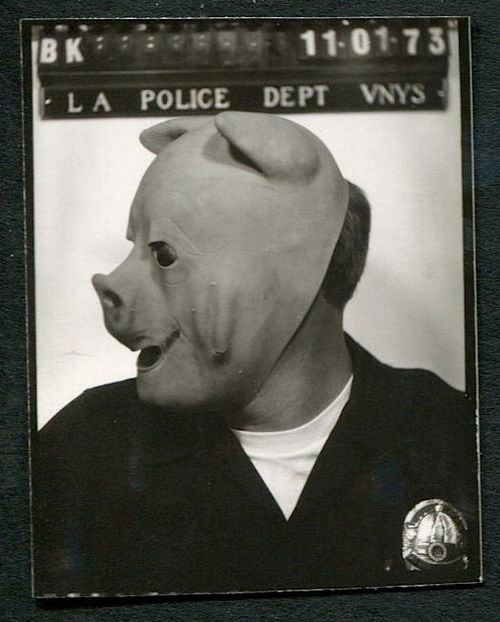 Pigs of L.A.