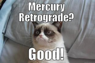 The Eye of Vintage Blog Shop-Mercury Retrograde 2019-crazy cat meme